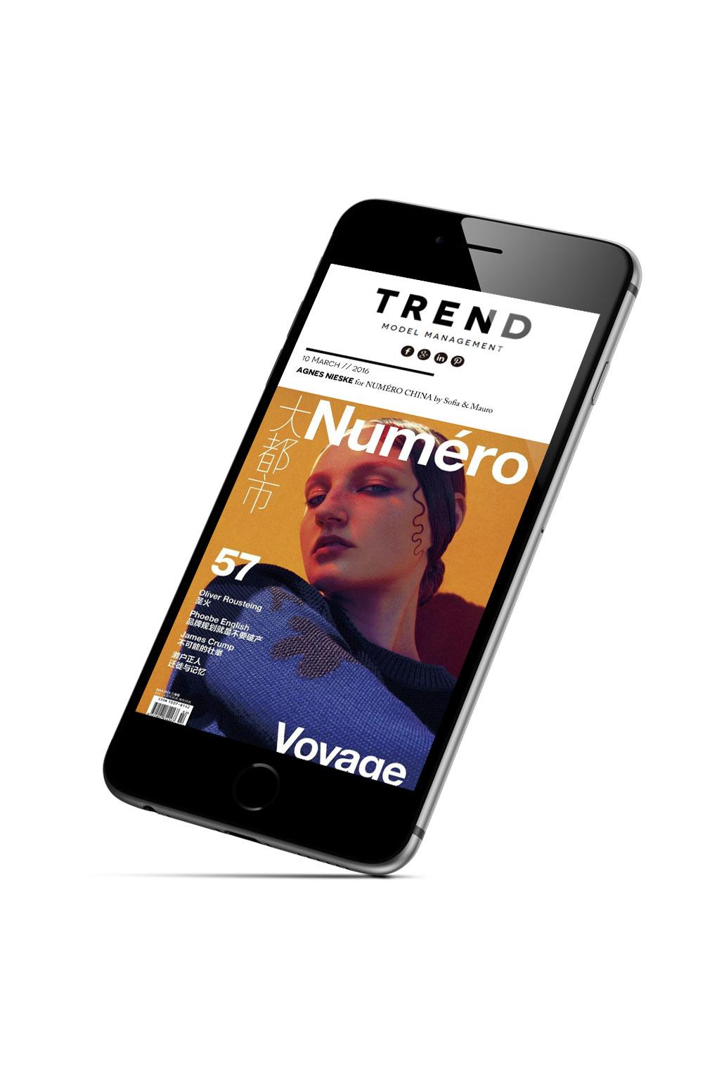 Trend Models